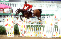 Ludger Beerbaum  Classic Touch Olympic Games SJ131-01-33.JPG